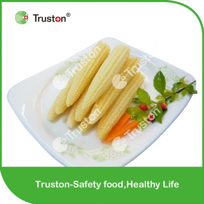 Canned Baby Corn In Brine With Best Price
