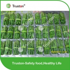 Frozen Bundled Green Asparagus from China